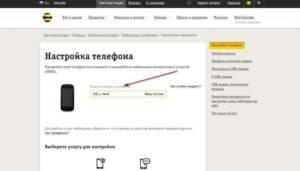 2-Nastrojki-telefona-dlya-interneta-300x171.jpg