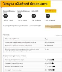 3-Platnaya-usluga-Hajvej-bezlimit-i-kombinatsii-dlya-nee-258x300.png
