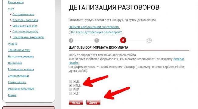 mobilnaya_detalizaciya_mts_1.jpg
